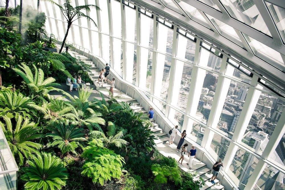 sky garden tai palm garden