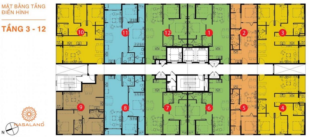 Mặt bằng dự án căn hộ nhà phố Lucky Dragon Quận 9