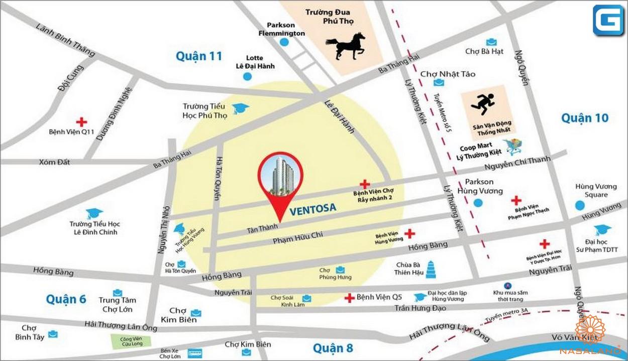 Vị trí dự án căn hộ Venus Luxury quận 5