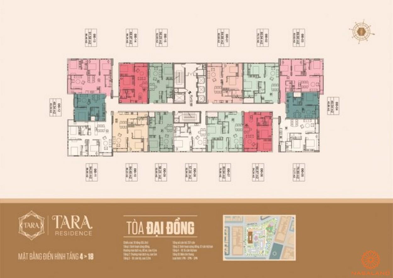 Mặt bằng tòa Đại Đồng căn hộ Tara Residence