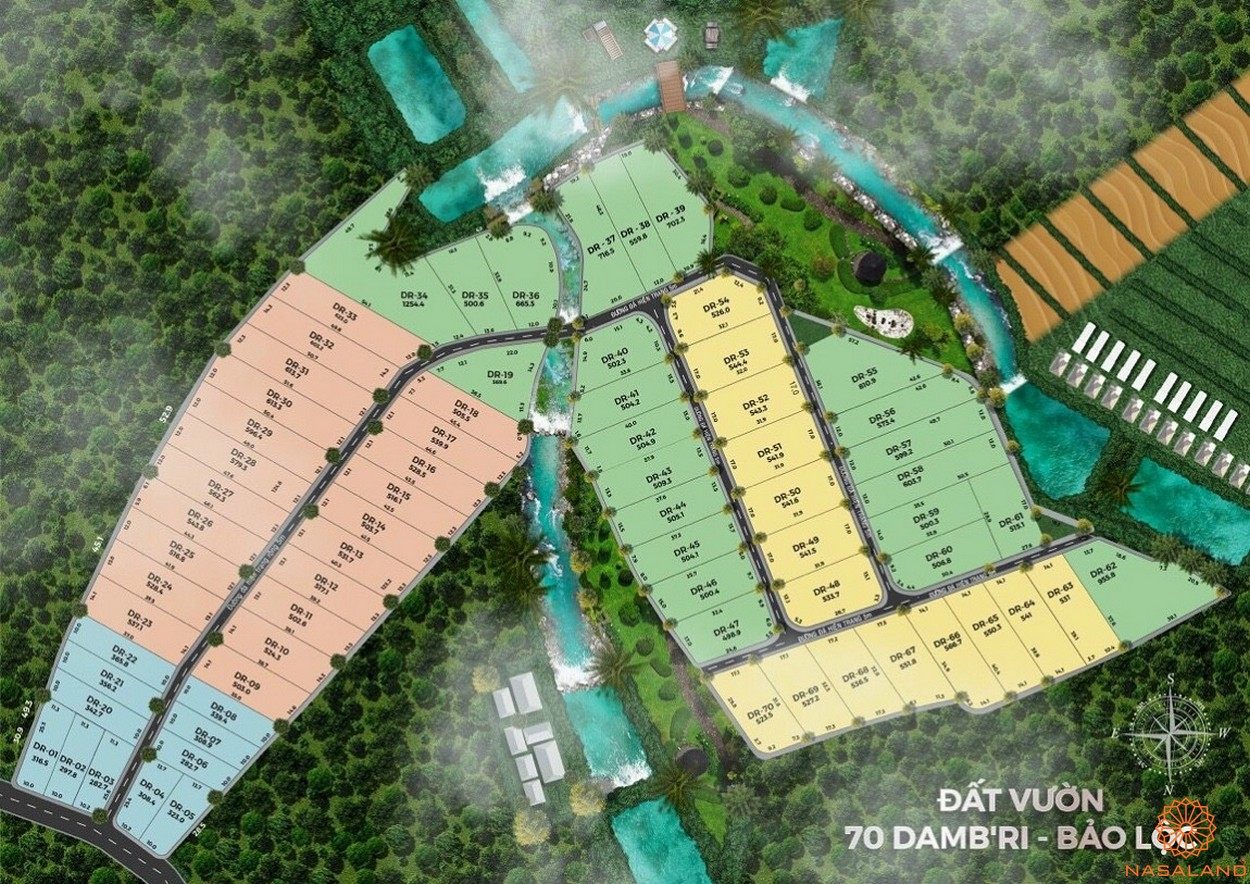 Mặt bằng tổng thể dự án đất vườn 70 Damb'ri Bảo Lộc Lâm Đồng
