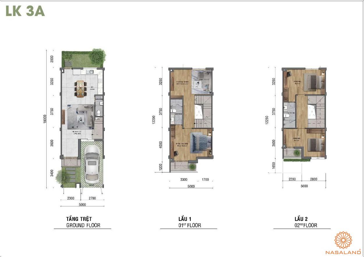 Thiết kế dự án căn hộ Corona City