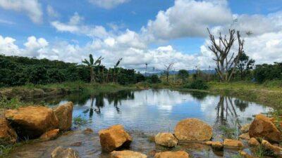 Tiện ích dự án đất vườn 70 Damb'ri Bảo Lộc Lâm Đồng - Hồ sinh thái