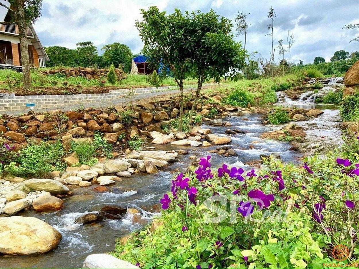 Tiện ích dự án đất vườn 70 Damb'ri Bảo Lộc Lâm Đồng - Suối